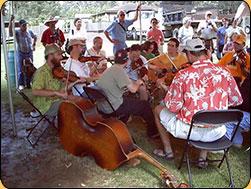 trad music tent