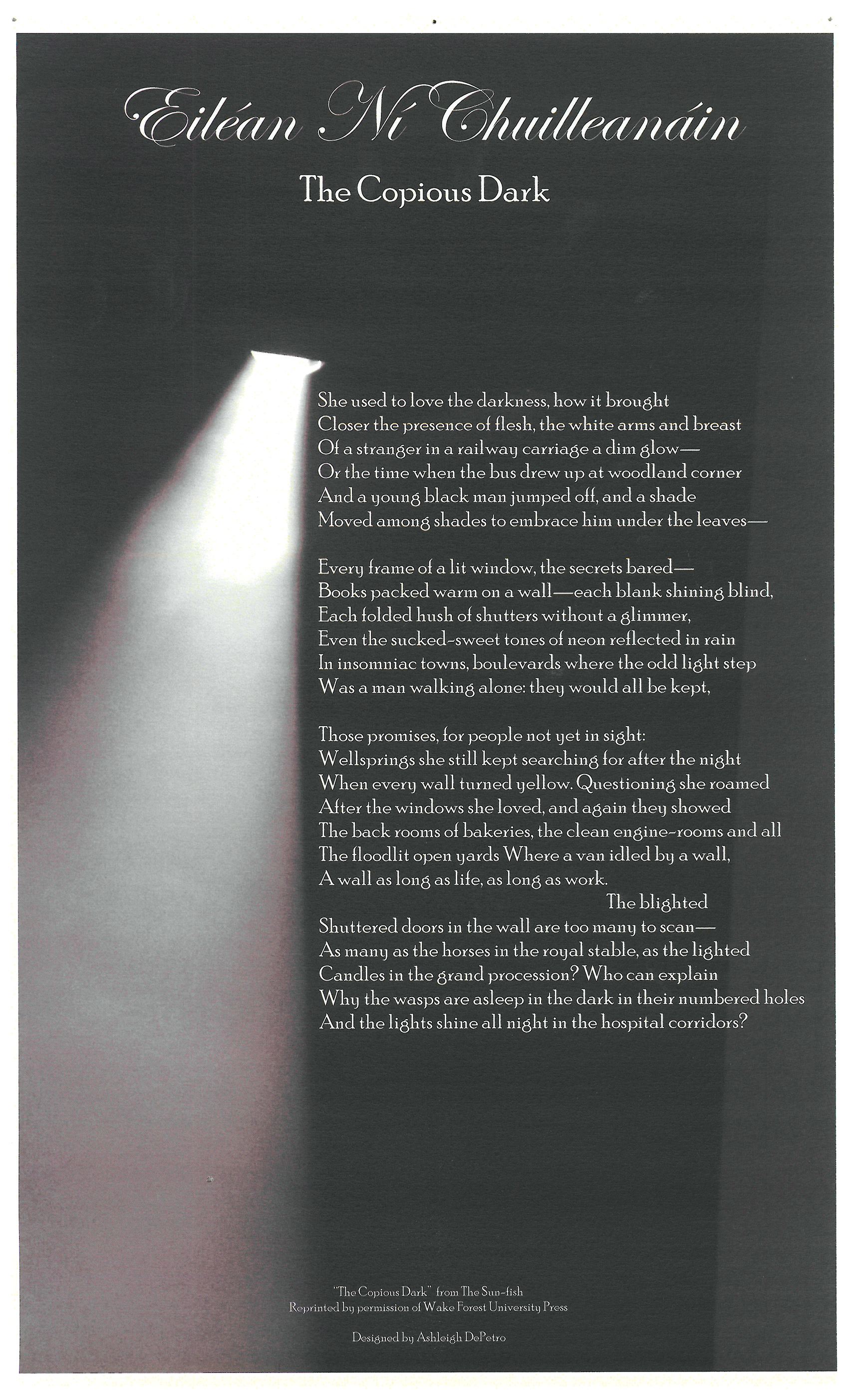 """The Copious Dark"" Broadside"